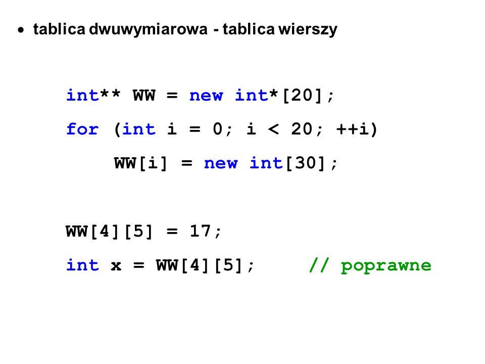 for (int i = 0; i < 20; ++i) WW[i] = new int[30]; WW[4][5] = 17;